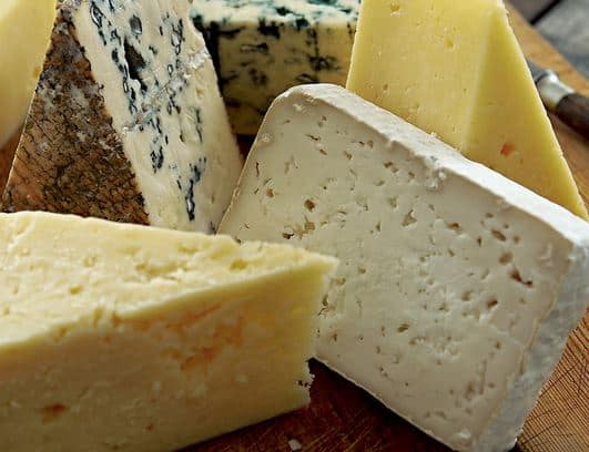 The Cheeses of Europe