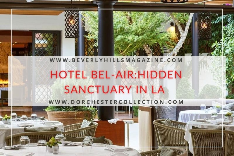 Hotel Bel-Air: A Hidden Sanctuary in the Woods:#beverlyhills #beverlyhillsmagazine #hotelbel-air #bel-air #hotelsinbel-air #dorchestercollections #luxuryhotels #5starhotels #hotelsinla #hollywood #dreamvacation #vacationhotels