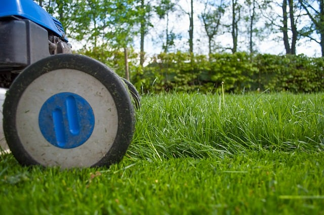 How to Select the Right Lawn Mower for Your Yard #lawmower #garden #lawn #grass