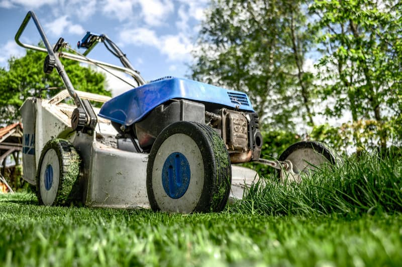 4 Tips to Get the Perfect Lawn #homeowners #dreamhomes #realestate #luxuryhomes #bevhillsmag #beverlyhills #beverlyhillsmagazine