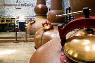Distillery Tour Etiquette - Do's and Don'ts #business
