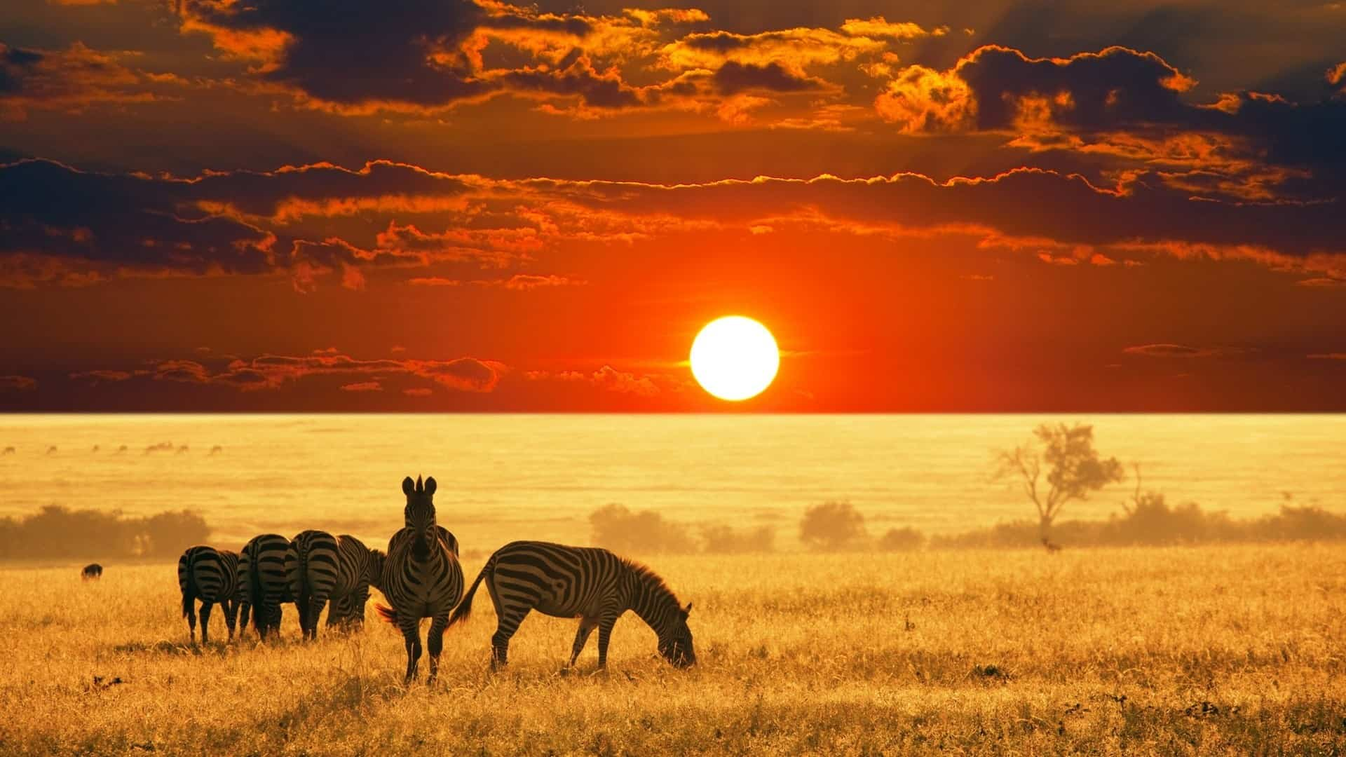 Exclusive-Escapes-Africa-Safari-Uganda-Safari-Travel-to-Africa-Map-of-Africa-Kampala-Exclusive-Luxury-Travel-Magazine-Beverly-Hills-Magazine-1