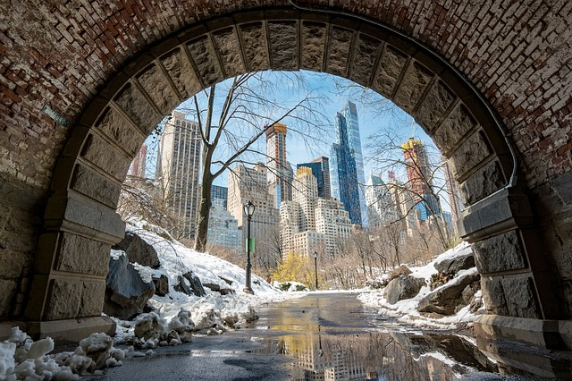Beautiful Snow and City Shot in Central Park