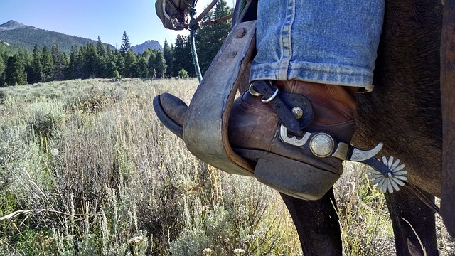 Tips To Take Care Of Your Long Leather Boots