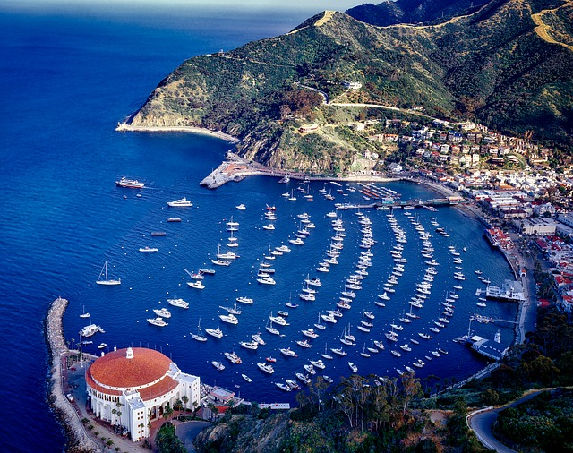 Time To Travel To Catalina Island #travel #vacation #beverlyhills #beverlyhillsmagazine #bevhillsmag #catalina island #island #life